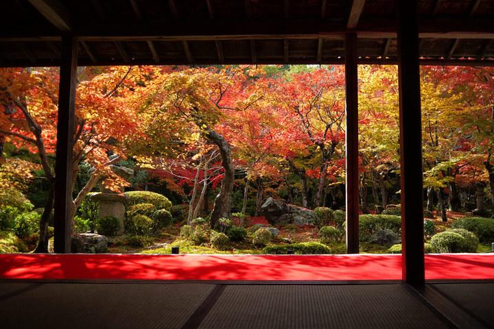 風俗で働きたいけど地元では身バレが心配な方へ。出稼ぎなら京都府河原町がオススメ!